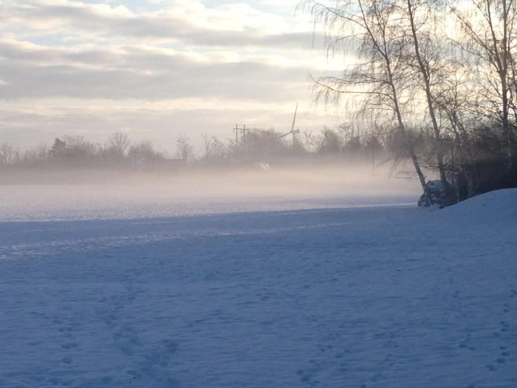 Vinter sol 2015 1