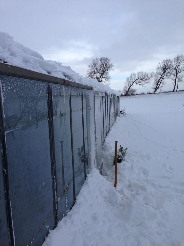 vinter 2015 2